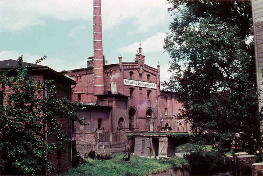 Hasseröder Brauerei im Jahr 1952