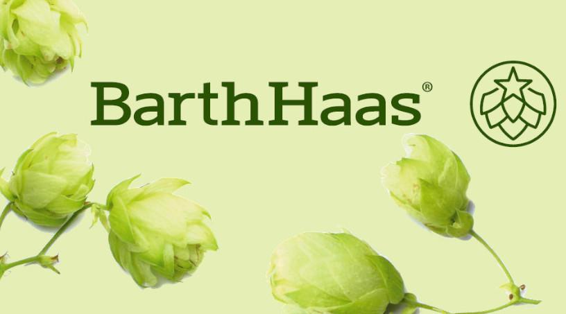 Barth Haas gründet Aufsichtsrat